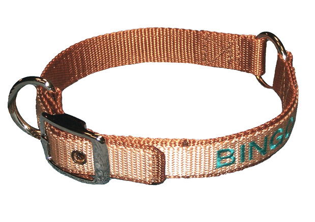dog collars specialty collars center ring