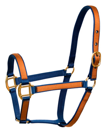 "STANDARD HORSE HALTERS - 1"" Base with 3/4"" Overlay"